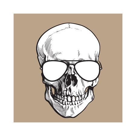 Hand drawn human skull wearing black and white aviator sunglasses, sketch style vector illustration isolated on brown background. Realistic hand drawing of skull wearing sunglasses Illustration
