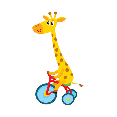 Cute little giraffe character riding bicycle, tricycle, cycling, cartoon vector illustration isolated on white background. Little baby giraffe animal character riding bike, bicycle, tricycle