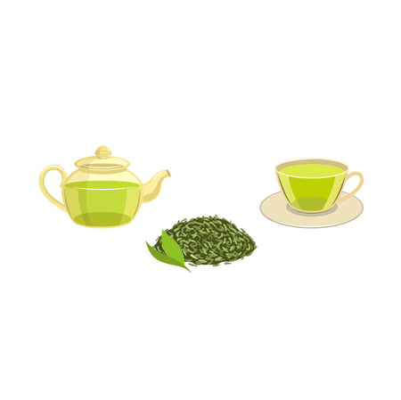 Vector green leaf tea, transparent teapot and cup of tea set. Flat isolated illustration on a white background. Cartoon herbal tea set. Healthy beverage, lifestyle concept