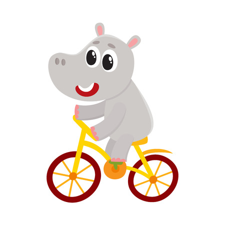 Cute little hippo character riding bicycle, cycling, cartoon vector illustration isolated on white background. Little baby hippo, hippopotamus animal character riding bike, bicycle, cycling happily