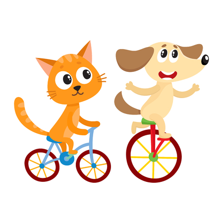 Cute little dog and cat, kitten characters riding bicycles together, cartoon vector illustration isolated on white background. Baby dog and cat, kitten animal characters riding bicycles, cycling