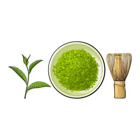 Hand drawn bowl of matcha powder, bamboo whisk and green tea leaf, sketch vector illustration isolated on white background. Realistic hand drawing of matcha powder, bamboo whisk and green tea leaf