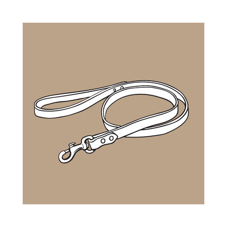 Simple pet, cat, dog brown leather leash with metal fastener, black and white sketch style vector illustration isolated on brown background. Hand drawn pet, dog leash, lead made of thick leather