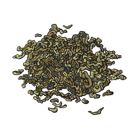 Hand drawn pile, heap, handful of dry, fermented green tea leaves, sketch vector illustration isolated on white background. Realistic hand drawing of dry green tea leaves Illustration