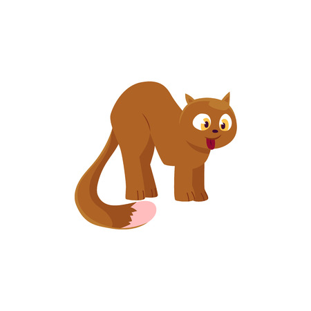 Cute comic style brown domestic cat with bushy tail, cartoon vector illustration isolated on white background. Cartoon fluffy, plump cat with little ears and bushy tail. Cat yoga pose symbol