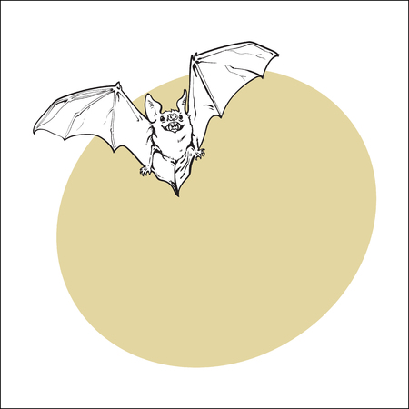 Scary flying Halloween vampire bat, sketch style vector illustration with space for text. Hand drawn, sketch style vampire bat flying with wide spread wings, Halloween object Illustration