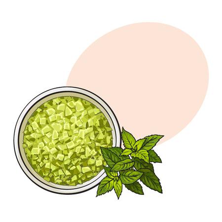 유기, 녹색 향기로운, 목욕 소금, 상위 뷰 스케치 스타일 벡터 일러스트 레이 션 텍스트위한 공간을 가진 그릇. 아로마 목욕 소금, 스파 살롱 액세서리