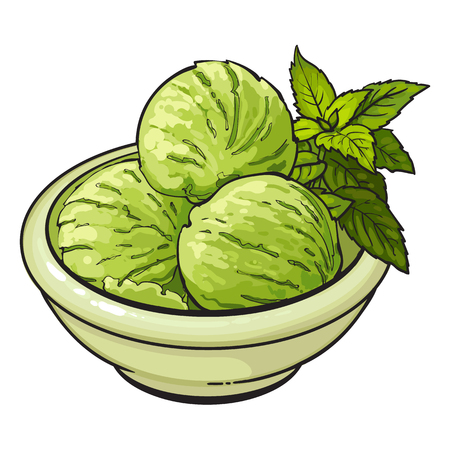 Hand drawn bowl of matcha green tea ice cream scoops, sketch vector illustration isolated on white background. Hand drawn matcha tea ice cream, sorbet, gelato serving decorated with mint leaves