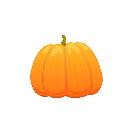 ベクトルの大きな漫画カボチャ。白い背景に分離の図。食欲の秋のシンボル オブジェクト概念  イラスト・ベクター素材