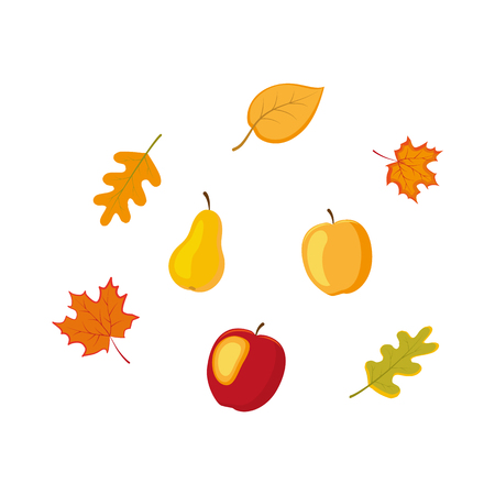 vector fruit, vegetables and autumn falling leaves flat set. Isolated illustration on a white background. Cartoon apple pear, oak maple leaves. Autumn fall symbols objects concept