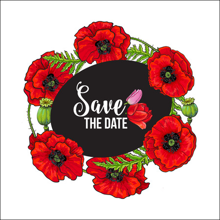 Vector red poppy flower blooming save the date template . Illustration on a black background. Realistic hand drawn blossom with stem. Floral design object. Summer, spring sign, symbol.