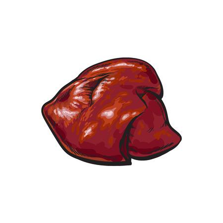 ベクトル豚肉生肝内臓スケッチ。白い背景に分離の図。手の描かれた豚モツ
