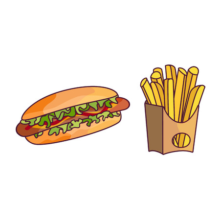 Vector potato fry, hot dog set. Fast food flat cartoon isolated illustration on a white background. Hot dog with Sausege tomato sauce and salad, french fries in paper box elements