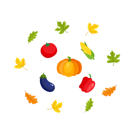 Fall, autumn harvest set - pumpkin, corn, eggplant, bell pepper, tomato, oak and maple leaves, cartoon vector illustration isolated on white background. Cartoon falling leaves and ripe vegetables