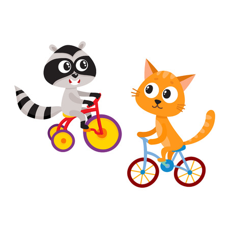 Cute little raccoon and cat characters riding bicycles together, cartoon vector illustration isolated on white background. Baby raccoon and cat animal characters riding bicycle and tricycle 版權商用圖片 - 84354849