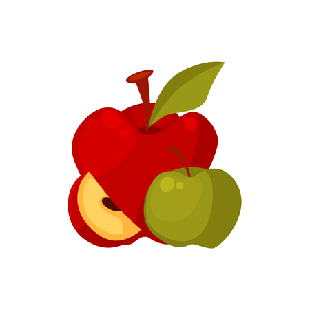 Group of cartoon style apple fruits, whole and slice, vector illustration isolated on white background. Cartoon style whole, uncut, unpeeled apples and apple slice, farm product