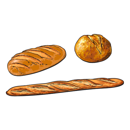wektor szkic świeży biały bochenek chleba, francuski zestaw bagietki. Szczegółowa ręka rysująca odosobniona ilustracja na białym tle. Mąka ciasta, baner piekarnia, obiekt projektu plakatu