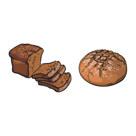 vector sketch fresh dark brown sliced rye bread and round loaf set. Detailed hand drawn isolated illustration on a white background. Flour pastry products, bakery banner, poster design object
