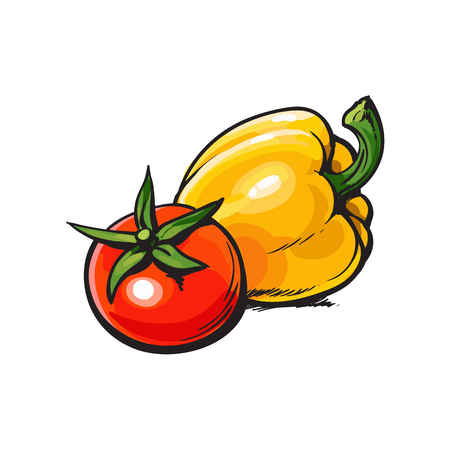 Fresh whole ripe red tomato and yellow bell pepper, sketch style vector illustration on white background. Realistic hand drawing of whole ripe red tomato and yellow bell pepper Иллюстрация