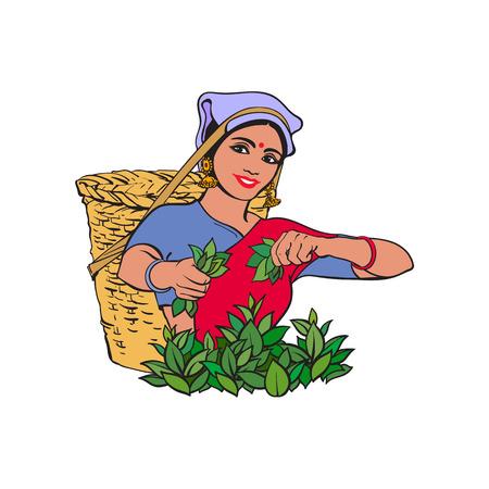 ベクター スケッチ漫画インド スリランカ ローカル女性大きな籐のバスケットに笑みを浮かべて伝統方法で茶を収集します。伝統的女性キャラクター、手描きのスリランカ、インドのシンボルを服を着てください。