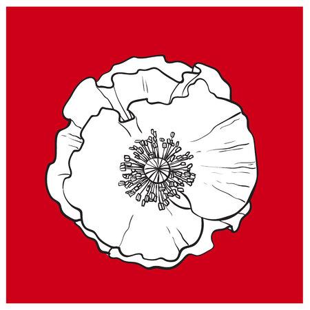 ベクトル黒と白ケシの花の咲くクローズ アップ。赤い背景の上の孤立した図。現実的な手描きの花幹。