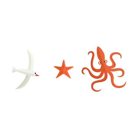 Set of sea life objects - seagull, octopus and starfish, flat style cartoon vector illustration isolated on white background. Simple flat style cartoon seagull, octopus and starfish Illustration