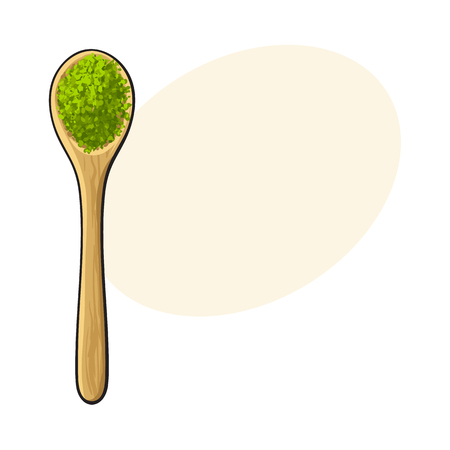 Top view drawing of bamboo, wooden spoon with matcha green tea powder, sketch style vector illustration with space for text. Realistic hand drawing of matcha green tea powder in wooden spoon