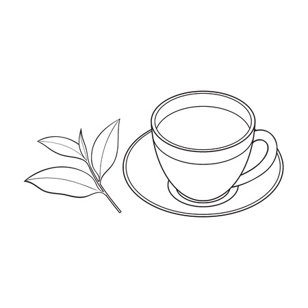Transparent glass cup, saucer and fresh tea leaf, sketch vector illustration isolated on white background. Hand drawn glass mug and saucer set with tea leaf Illustration