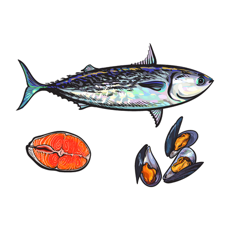 vector sketch cartoon sea fish tuna, salmon red fish fillet, mussels set. Isolated illustration on a white background. Sea delicacy food concept Illustration