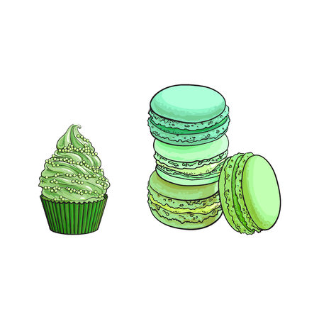 vector sketch hand drawn cupcake, macaroni with japanese green tea matcha or mint taste. Isolated illustration on a white background. Tasty cookie, cake biscuit sweets with exotic flavor