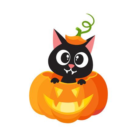 Vector de dibujos animados plano lindo gato divertido sentado en halloween calabaza de miedo con sombrero de calabaza con tallo en la cabeza sonriendo. Ilustración aislada en un fondo blanco. Concepto de lujo animal Foto de archivo - 84861791