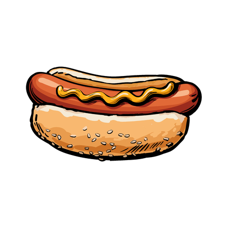 Vector sketch sausage hot dog with mustard sauce. Fast food hand drawn cartoon isolated illustration on a white background. fresh sandwich with sauce and salad