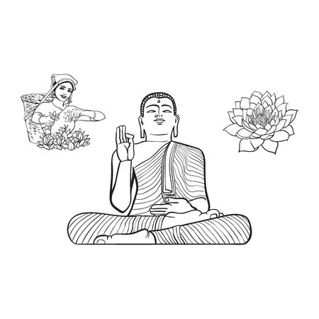 Vector dibujo de dibujos animados oriental, oriental estatua de sentarse en la postura de Lotus Budda, mujer local recogiendo té, flor de loto conjunto. Ilustración aislada sobre un fondo blanco. Dibujado a mano Sri-lanka símbolo Foto de archivo - 84899694
