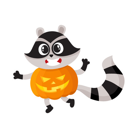 vector flat cartoon funny spooky raccoon wearing big pumpkin smiling. Isolated illustration on a white background. Fancy Halloween outfit for an animal concept Ilustração