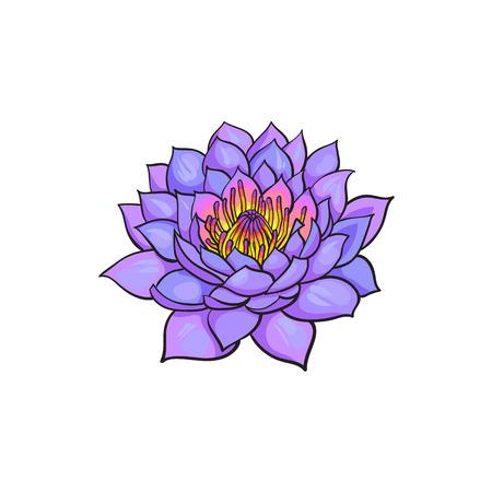 ベクター スケッチ漫画ロータス花桜咲きます。白い背景に分離の図。仏教、瞑想の知恵のシンボルです。インドとスリランカのサイン  イラスト・ベクター素材