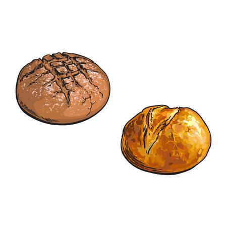 벡터 스케치 신선한 라운드 어두운 갈색, 흰색 호 밀 빵 덩어리 설정합니다. 자세한 손으로 흰색 배경에 고립 된 그림을 그려. 밀가루 과자 제품, 제과