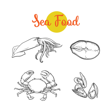 벡터 스케치 만화 왕새우, 오징어, 바다 참치 집합 물고기. 흰색 배경에 고립 된 그림입니다. 바다 진미 식품 개념 일러스트