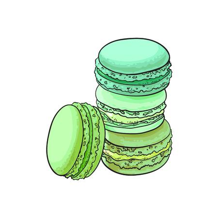vector schizzo maccheroni disegnati a mano con tè verde giapponese matcha o gusto di menta. Illustrazione isolato su uno sfondo bianco. Gustoso biscotto, torta dolce biscotto con sapore esotico