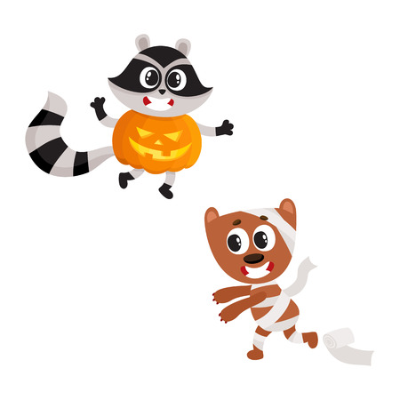 vector flat cartoon funny spooky raccoon wearing big pumpkin, mummy dog wrapped in toilet paper set. Isolated illustration on a white background. Fancy Halloween outfit for an animal concept