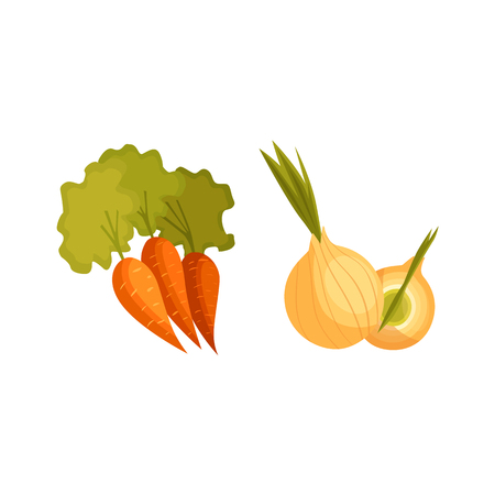 Cartoon style vegetables, farm products - carrot and bulb onion, vector illustration isolated on white background. Cartoon style whole raw carrot and onion vegetable, farm product Çizim