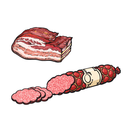 vector sketch salami sausage with slices and pork lard. Cartoon isolated illustration on a white background. Sausage and meat types concept