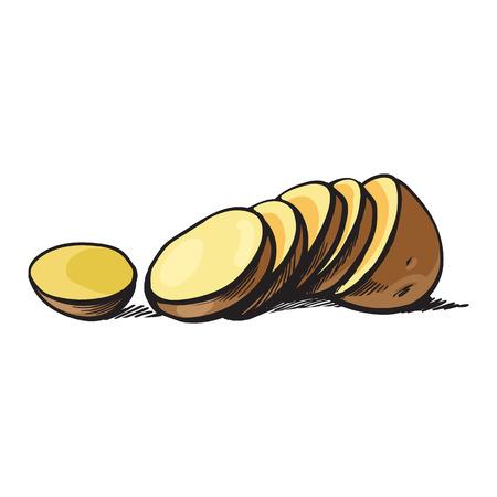 ベクター スケッチ漫画熟した生皮が付いたままスライスした黄色いポテト スライス。白い背景に分離の図。野菜の新鮮な自然製品、健康的なライフ  イラスト・ベクター素材
