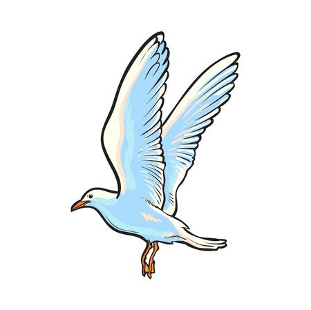Mouette volante, dessinés à la main, croquis style illustration de vecteur de dessin animé côté vue isolé sur fond blanc. Illustration vectorielle dessinés à la main de dessin animé de vol de mouette Banque d'images - 85238811