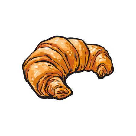 vector sketch fresh french Croissant. Detailed hand drawn isolated illustration on a white background. Flour pastry products, bakery banner, poster design object 向量圖像