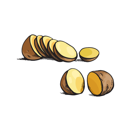 vector sketch cartoon ripe raw unpeeled sliced yellow potato with slices .Isolated illustration on a white background. Vegetable fresh natural product, healthy lifestyle, eating concept Imagens - 85319261