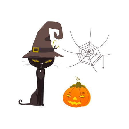Halloween objects - spooky black cat in witch pointy hat, spider web and pumpkin lantern, cartoon vector illustration isolated on white background. Cartoon witch cat, Halloween pumpkin and spider web Illustration