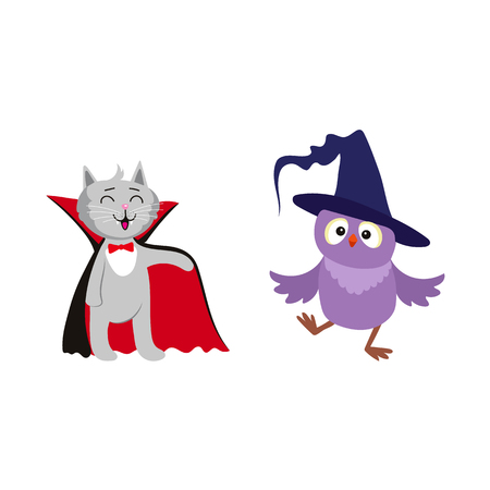 vector flat cartoon funny cat dressed up like vampire count Dracula, owl in witch pointed hat set. Isolated illustration on a white background. Fancy Halloween outfit for an animal concept