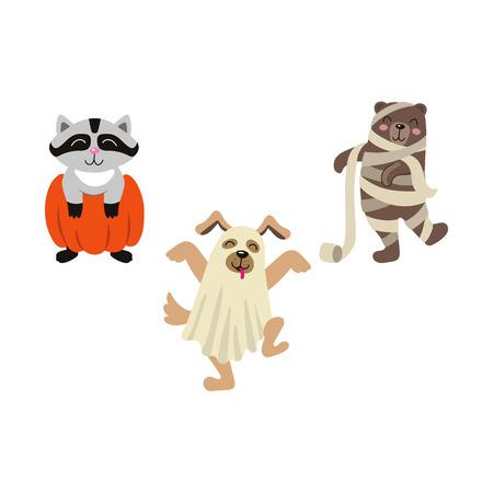 벡터 만화 재미 있은 할로윈 동물 - 곰 미라, 화장지, 올빼미 마녀 모자, 호박 및 개 유령 bedsheet 집합에서에서 적갈색에 싸여. 흰 배경에 고립 된 그림
