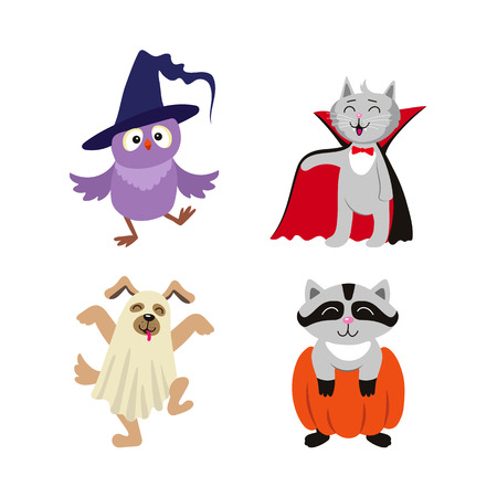 vector flat cartoon funny halloween animals - cat dressed up like vampire count Dracula, owl in witch hat , caroon in pumpkin and dog ghost in bedsheet set. Isolated illustration on a white background Stock Vector - 85615044
