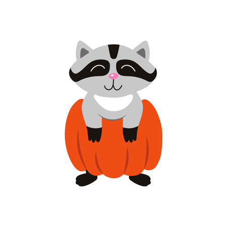 vector flat cartoon funny cute raccoon wearing big pumpkin smiling. Isolated illustration on a white background. Fancy Halloween outfit for an animal concept Illustration